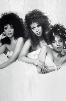 Pointer Sisters (the)